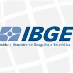 INFORMÁTICA PARA O IBGE - INSTITUTO BRASILEIRO DE GEOGRAFIA E ESTATÍSTICA - LÉO MATOS  2021